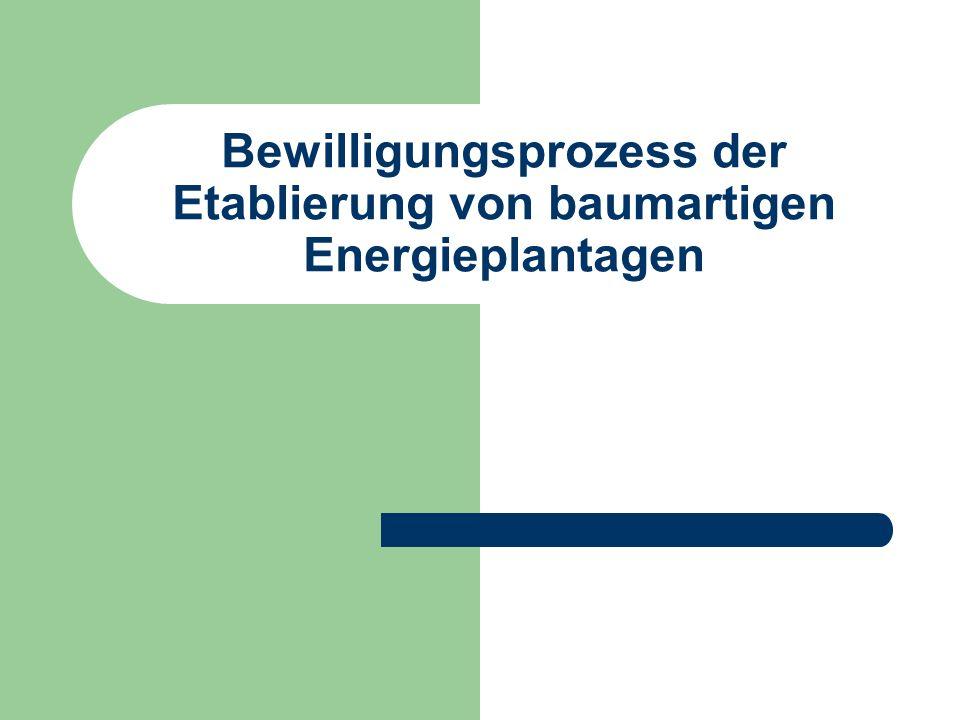 Bewilligungsprozess der Etablierung von baumartigen Energieplantagen