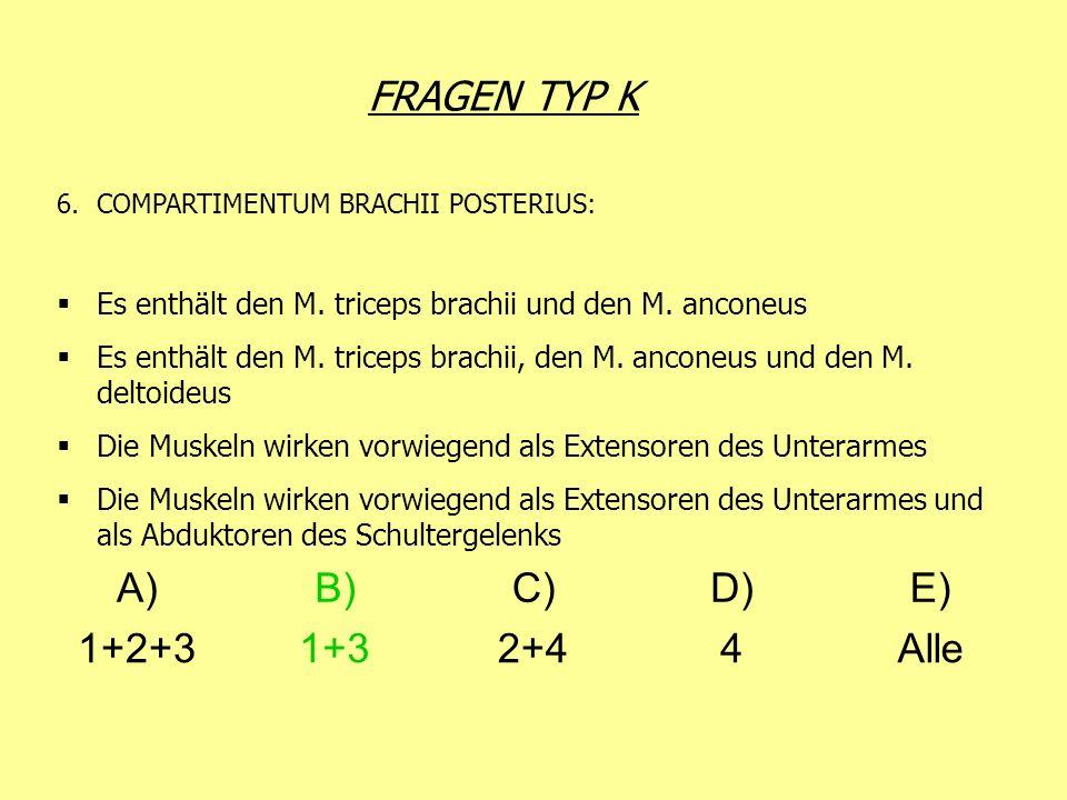 FRAGEN TYP K 6.COMPARTIMENTUM BRACHII POSTERIUS: Es enthält den M. triceps brachii und den M. anconeus Es enthält den M. triceps brachii, den M. ancon