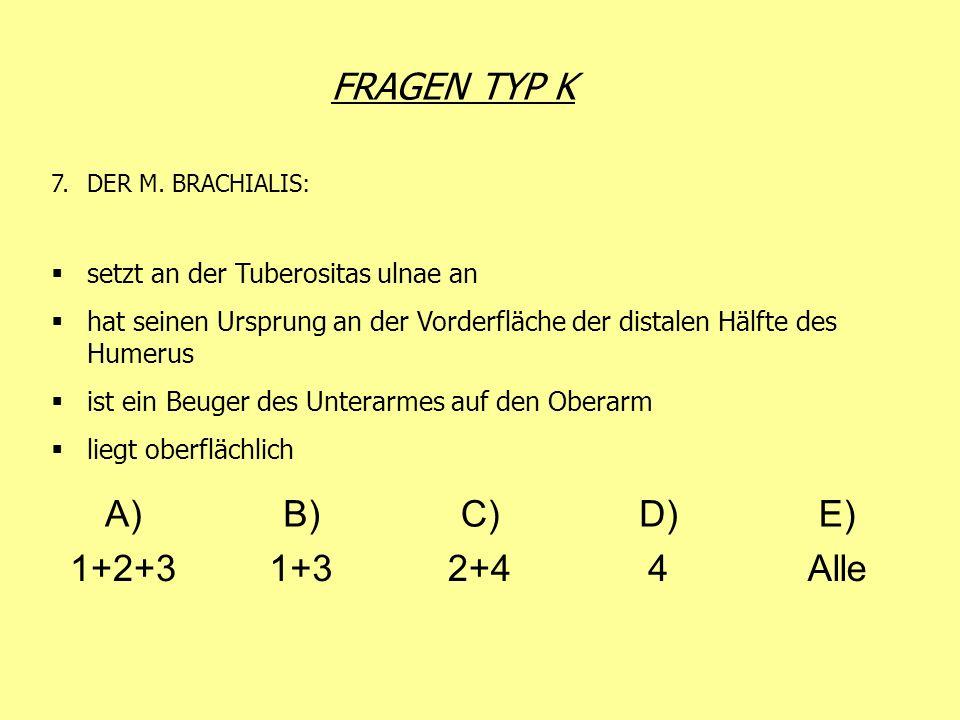FRAGEN TYP K 7.DER M. BRACHIALIS: setzt an der Tuberositas ulnae an hat seinen Ursprung an der Vorderfläche der distalen Hälfte des Humerus ist ein Be