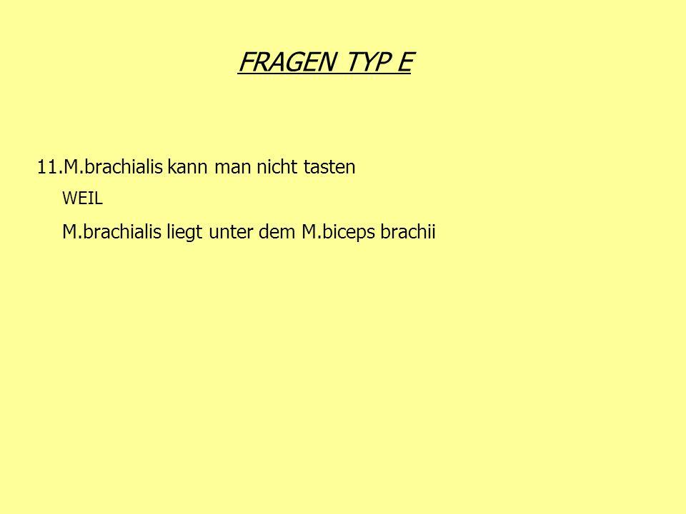 FRAGEN TYP E 11.M.brachialis kann man nicht tasten WEIL M.brachialis liegt unter dem M.biceps brachii