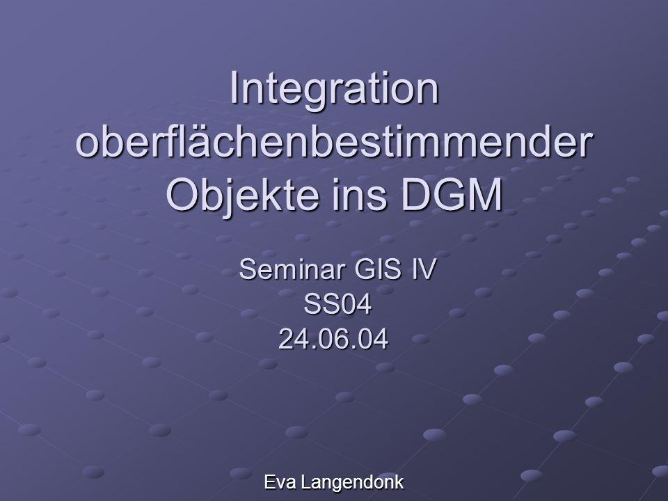 Inhalt 1.Ziele 2.Motivation 1.DGM-Rasterdaten 2. DGM-TIN 3.