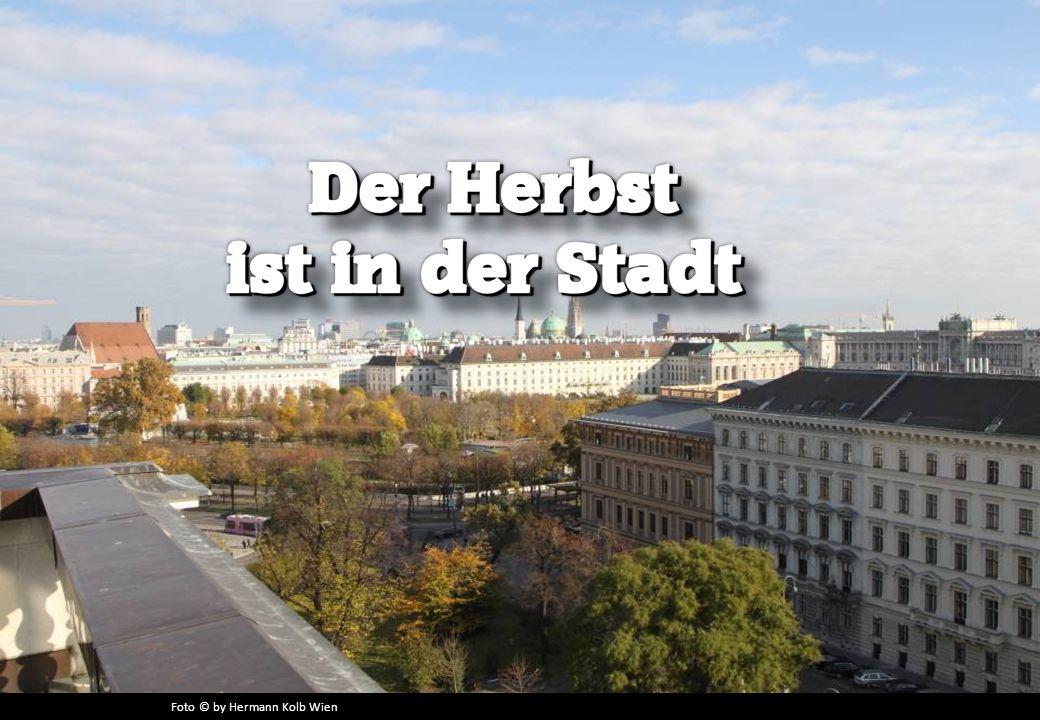 Foto © by Hermann Kolb Wien