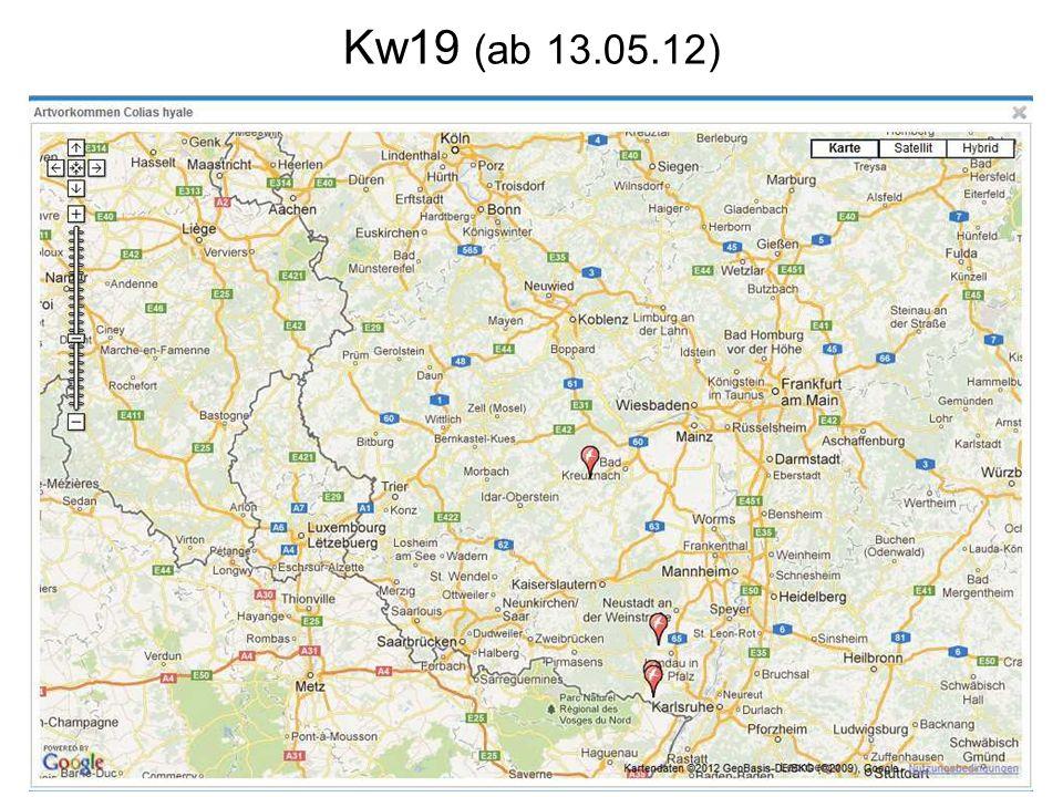Kw19 (ab 13.05.12)