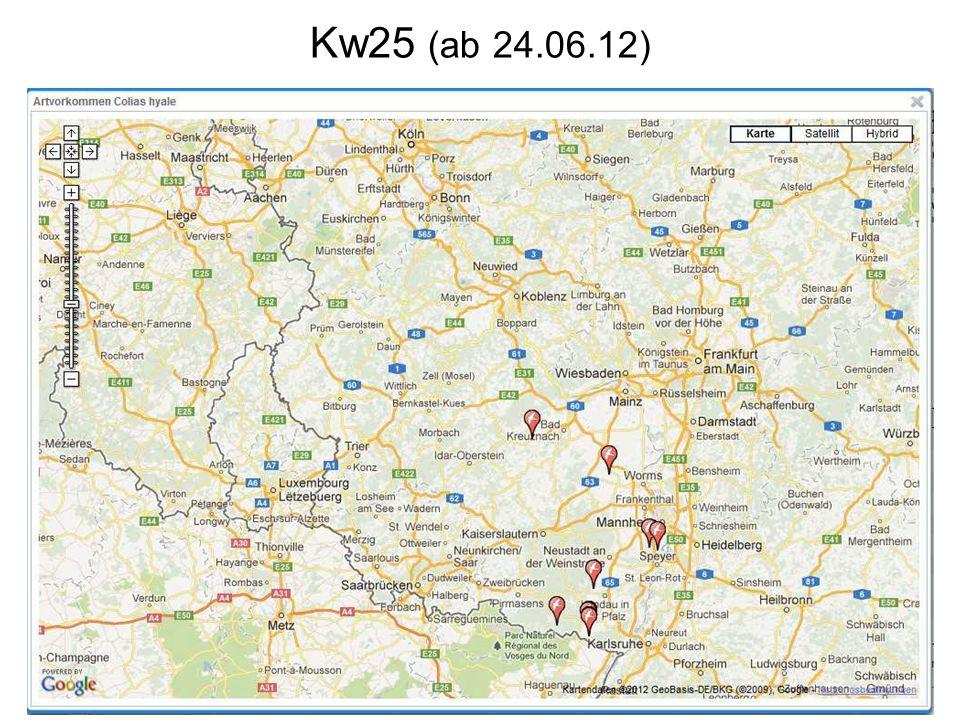 Kw25 (ab 24.06.12)