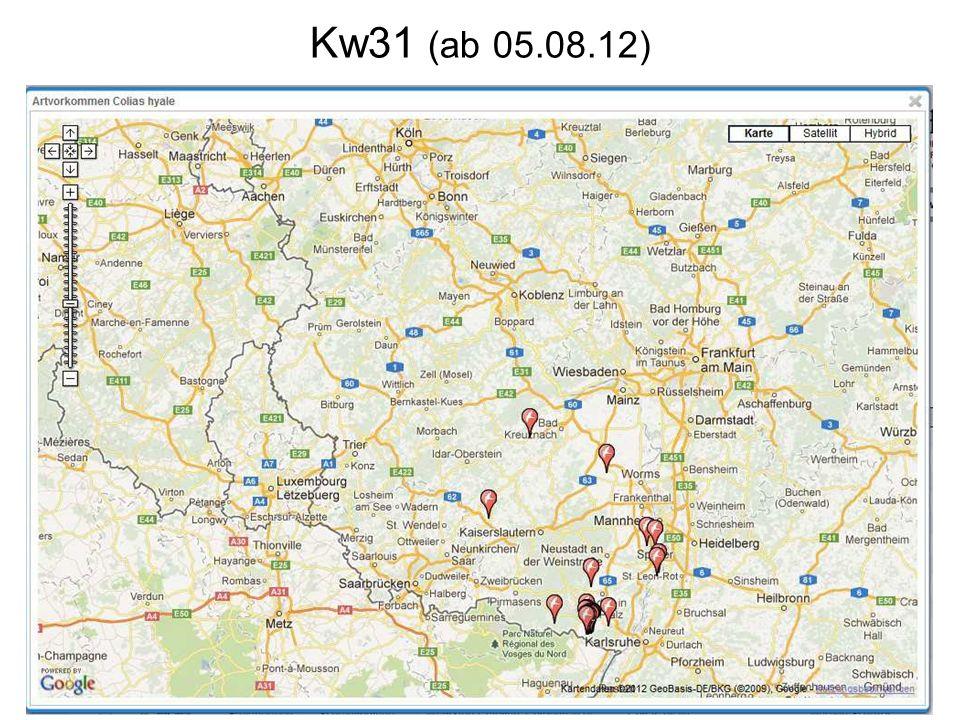 Kw31 (ab 05.08.12)