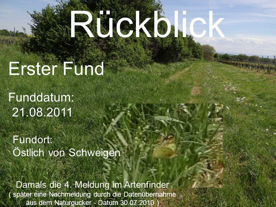 Kw17 (ab 29.04.12) Erster Fund Bernhard Gerach 27.04.2012 Zweiter Fund M&N Scheydt 29.04.2012