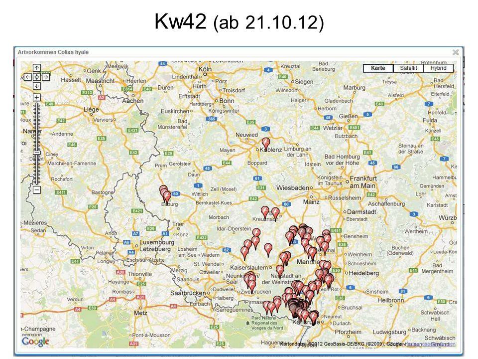 Kw42 (ab 21.10.12)