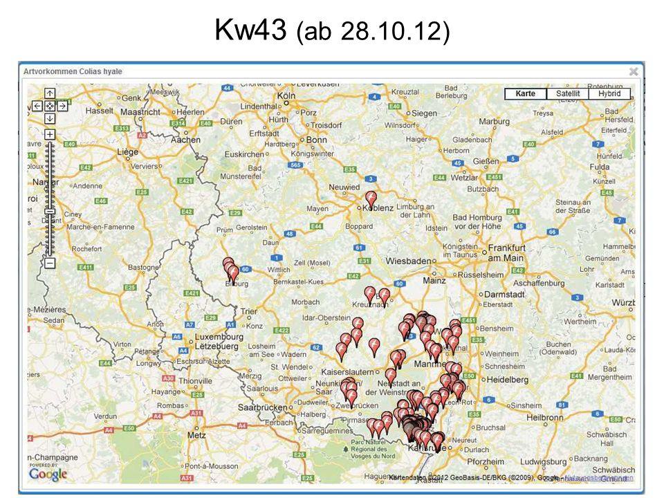 Kw43 (ab 28.10.12)