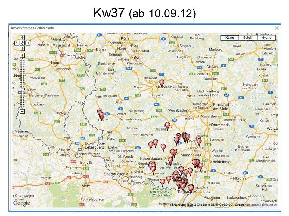 Kw37 (ab 10.09.12)