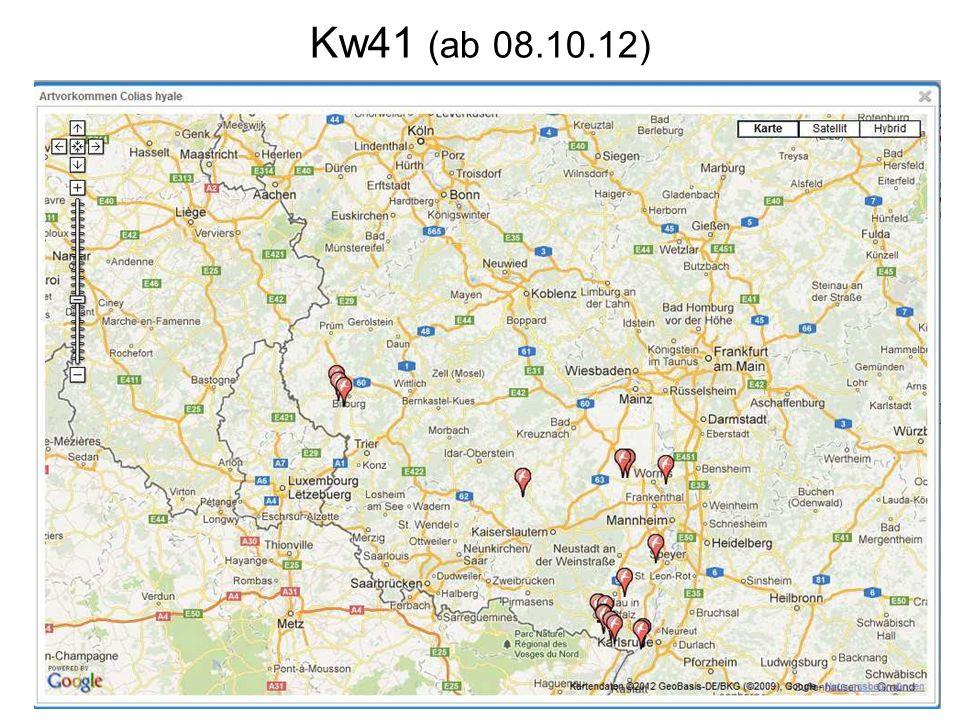 Kw41 (ab 08.10.12)