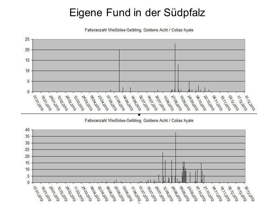 Eigene Fund in der Südpfalz