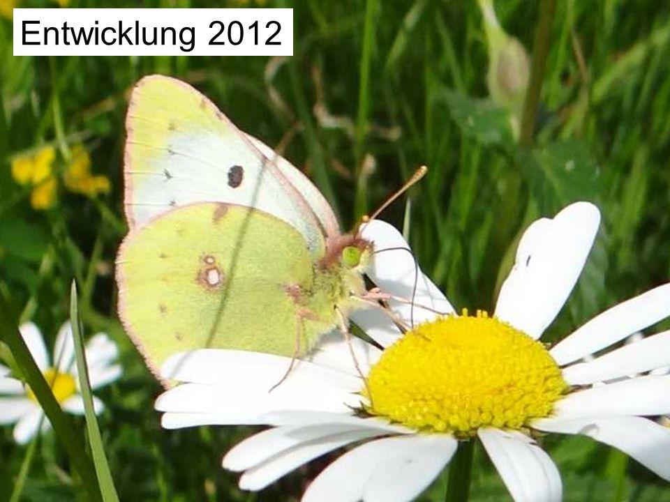 Unsere Fundorte 2012 Meldungen an Artenfinder: 89 Falter gemeldet: 287 2011: 9