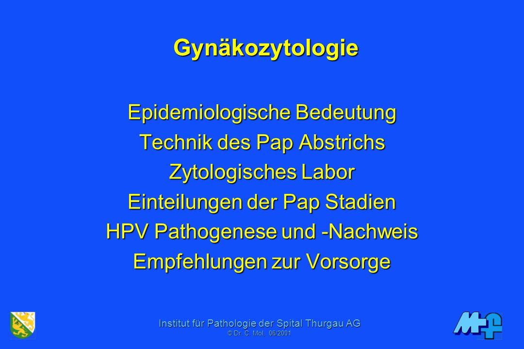 Institut für Pathologie der Spital Thurgau AG © Dr. C. Moll, 11/2006 Demo Gynäkozytologie Univ. Zürich 1. November 2006