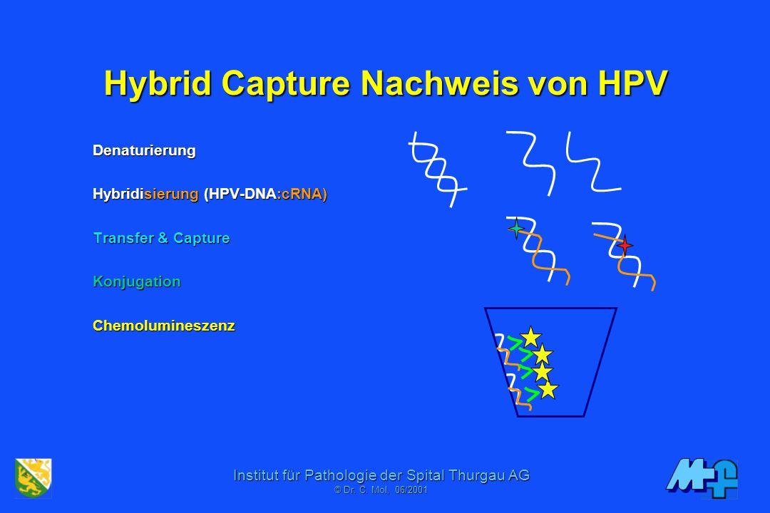 Institut für Pathologie der Spital Thurgau AG © Dr. C. Moll, 11/2006 Ungewöhnliches Restriktionspattern Eco Bam Hpa Hinf Pst Hae 0110 00 Sequenz Genba