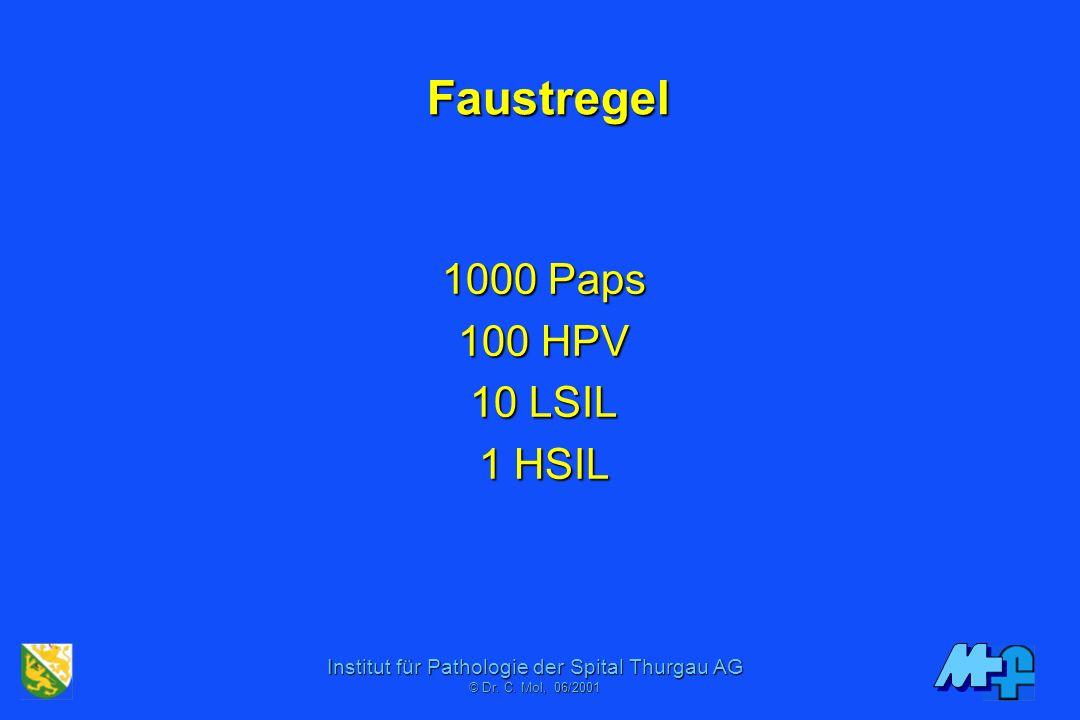 Institut für Pathologie der Spital Thurgau AG © Dr. C. Mol, 06/2001 Massnahmen gegen Restmorbidität PAP-Abstriche in Hausarztpraxen PAP als zytomorpho