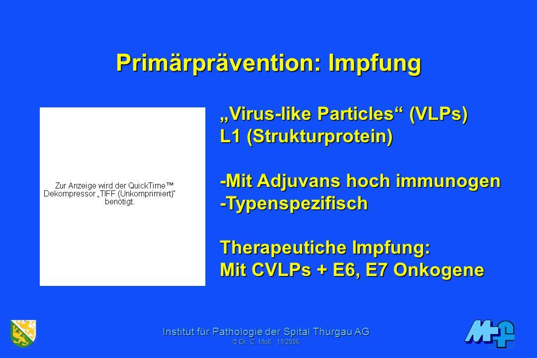Institut für Pathologie der Spital Thurgau AG © Dr. C. Mol, 06/2001 Primärprävention Anti-HPV Impfstrategien Genetische Faktoren Risikofaktoren (Rauch