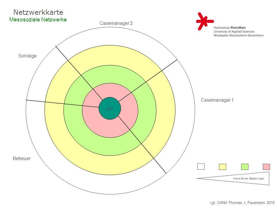 vgl. CANA Thomas J. Feuerstein 2010 Netzwerkkarte Mesosoziale Netzwerke Haustiere: Intensität der Beziehungen ich Casemanager 2 Casemanager 1 Betreuer