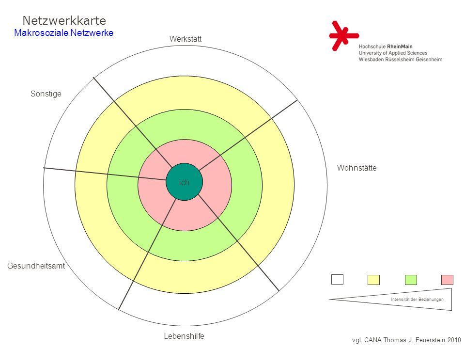 vgl. CANA Thomas J. Feuerstein 2010 Netzwerkkarte Makrosoziale Netzwerke Haustiere: Intensität der Beziehungen ich Werkstatt Wohnstätte Lebenshilfe Ge