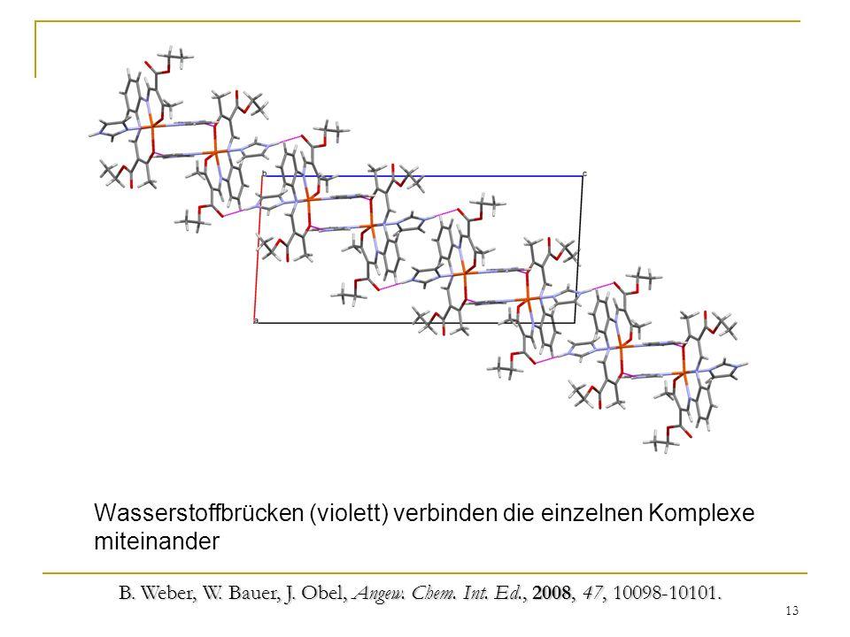 13 Wasserstoffbrücken (violett) verbinden die einzelnen Komplexe miteinander B. Weber, W. Bauer, J. Obel, Angew. Chem. Int. Ed., 2008, 47, 10098-10101