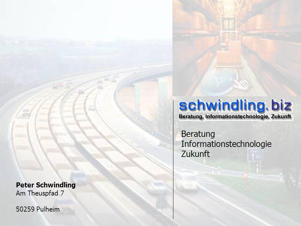 27.08.2002 – schwindling.biz Peter Schwindling Am Theuspfad 7 50259 Pulheim Beratung Informationstechnologie Zukunft