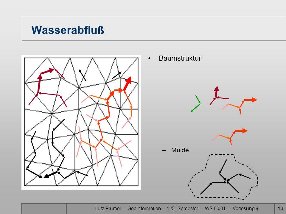 Lutz Plümer - Geoinformation - 1./5. Semester - WS 00/01 - Vorlesung 913 Wasserabfluß Baumstruktur –Mulde