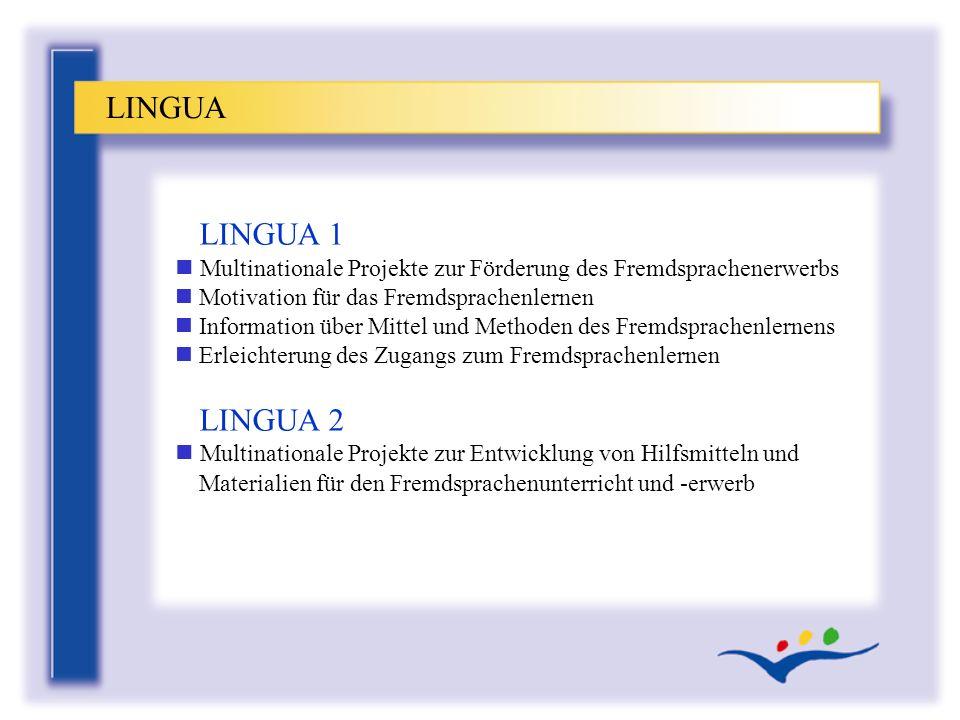 LINGUA 1 n Multinationale Projekte zur Förderung des Fremdsprachenerwerbs n Motivation für das Fremdsprachenlernen n Information über Mittel und Metho