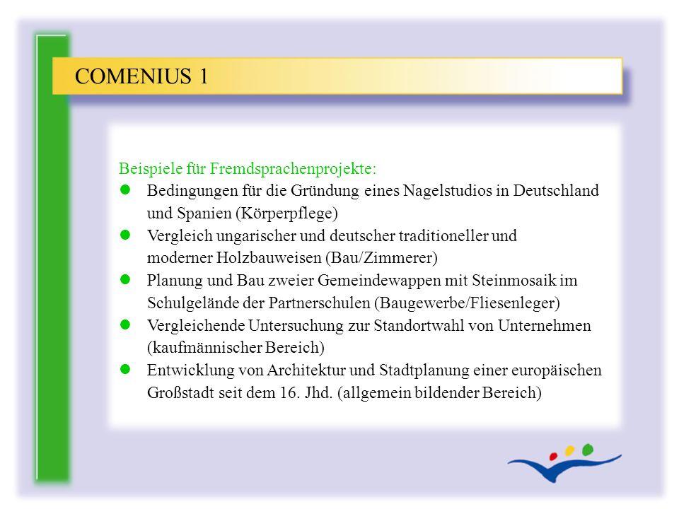 Beispiele für Fremdsprachenprojekte: l Bedingungen für die Gründung eines Nagelstudios in Deutschland und Spanien (Körperpflege) l Vergleich ungarisch