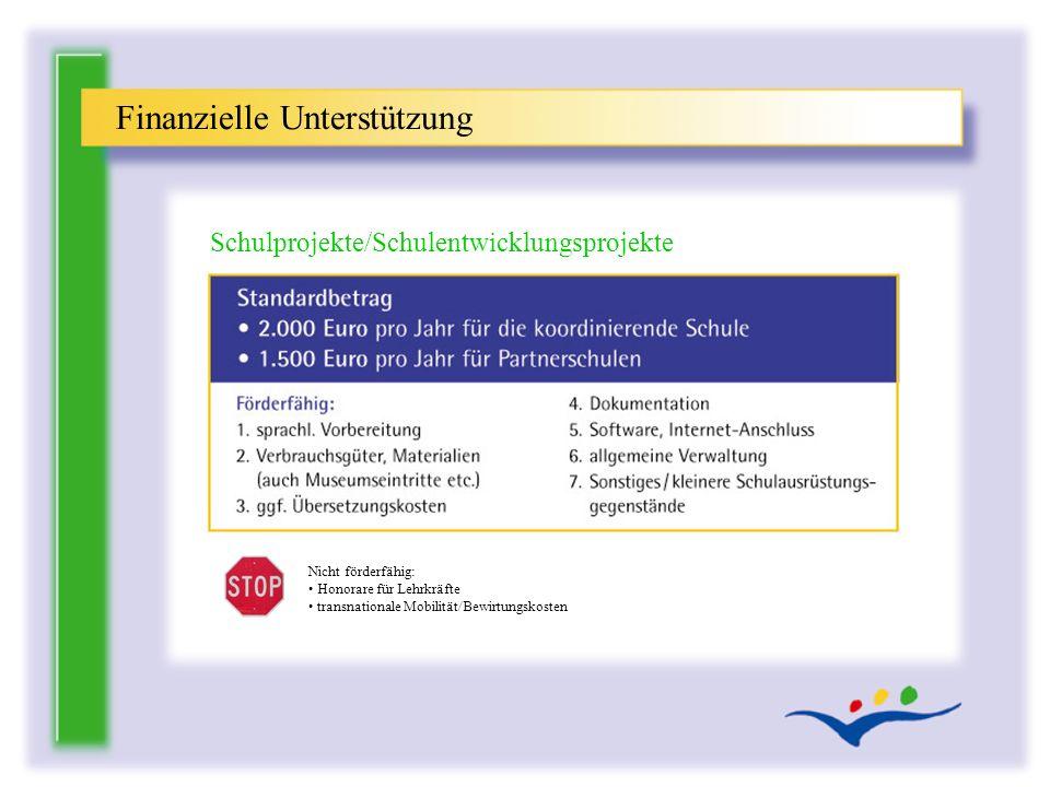 Finanzielle Unterstützung Schulprojekte/Schulentwicklungsprojekte Nicht förderfähig: Honorare für Lehrkräfte transnationale Mobilität/Bewirtungskosten