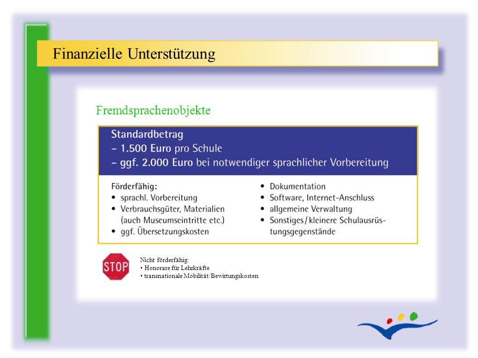 Finanzielle Unterstützung Fremdsprachenobjekte Nicht förderfähig: Honorare für Lehrkräfte transnationale Mobilität/Bewirtungskosten