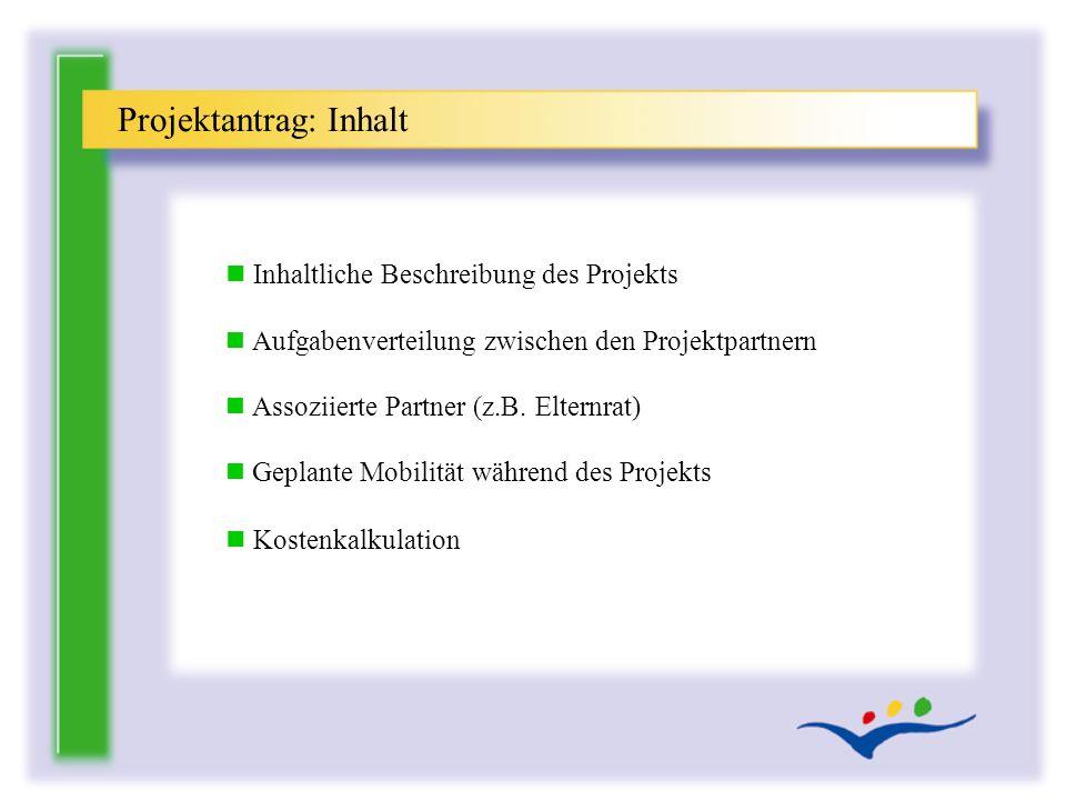n Inhaltliche Beschreibung des Projekts n Aufgabenverteilung zwischen den Projektpartnern n Assoziierte Partner (z.B. Elternrat) n Geplante Mobilität