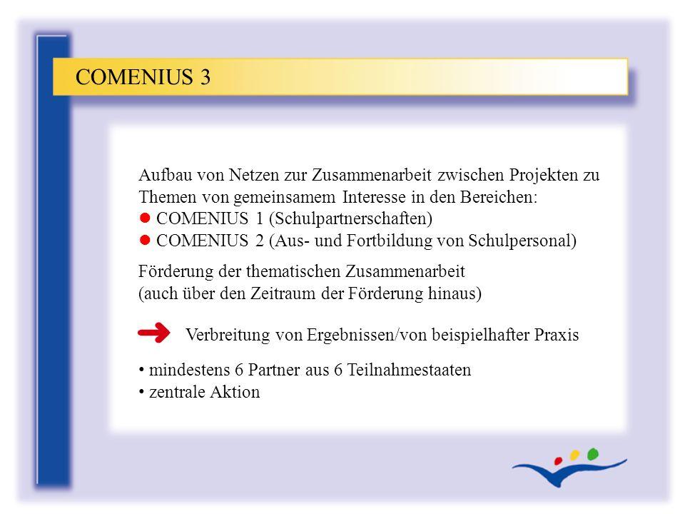 Aufbau von Netzen zur Zusammenarbeit zwischen Projekten zu Themen von gemeinsamem Interesse in den Bereichen: l COMENIUS 1 (Schulpartnerschaften) l CO