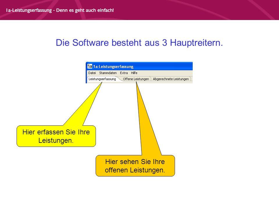 Die Software besteht aus 3 Hauptreitern. Hier erfassen Sie Ihre Leistungen.