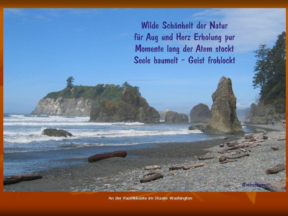 ©mholdener An der Pazifikküste im Staate Washington