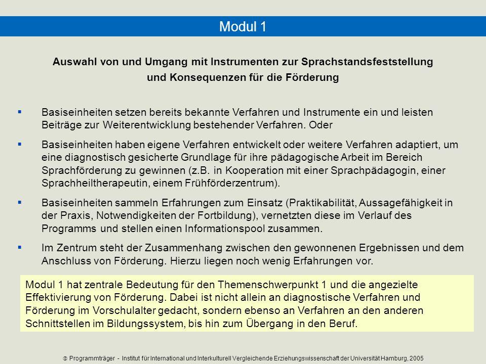 Modul 1 Auswahl von und Umgang mit Instrumenten zur Sprachstandsfeststellung und Konsequenzen für die Förderung Basiseinheiten setzen bereits bekannte