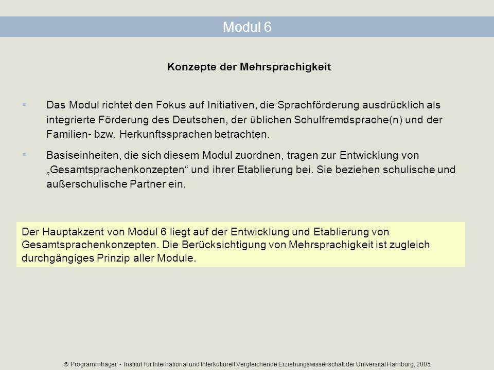 Modul 6 Konzepte der Mehrsprachigkeit Das Modul richtet den Fokus auf Initiativen, die Sprachförderung ausdrücklich als integrierte Förderung des Deut
