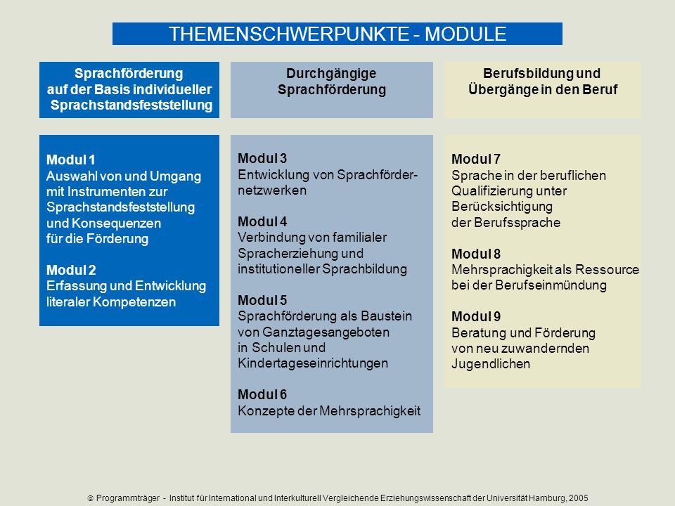 Modul 1 Auswahl von und Umgang mit Instrumenten zur Sprachstandsfeststellung und Konsequenzen für die Förderung Modul 2 Erfassung und Entwicklung lite