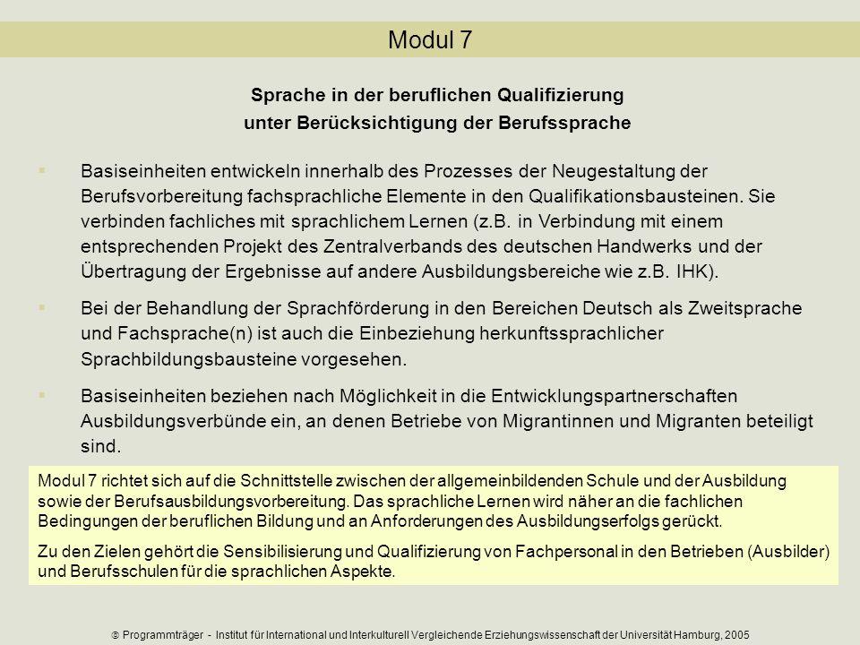 Modul 7 Sprache in der beruflichen Qualifizierung unter Berücksichtigung der Berufssprache Basiseinheiten entwickeln innerhalb des Prozesses der Neuge