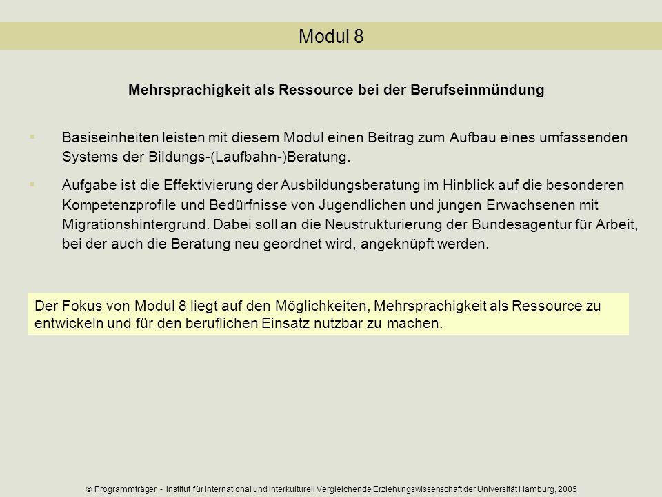 Modul 8 Mehrsprachigkeit als Ressource bei der Berufseinmündung Basiseinheiten leisten mit diesem Modul einen Beitrag zum Aufbau eines umfassenden Sys