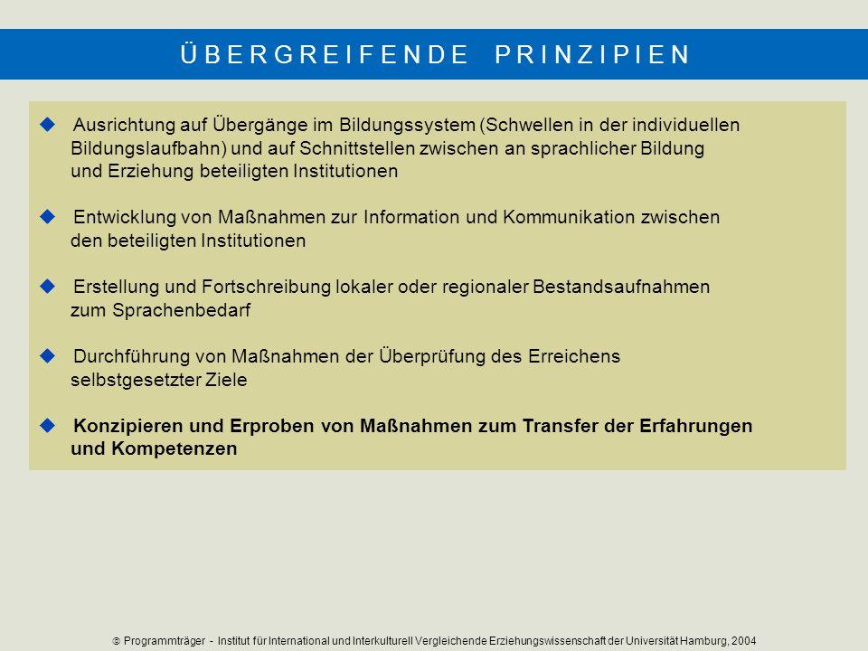 Ausrichtung auf Übergänge im Bildungssystem (Schwellen in der individuellen Bildungslaufbahn) und auf Schnittstellen zwischen an sprachlicher Bildung