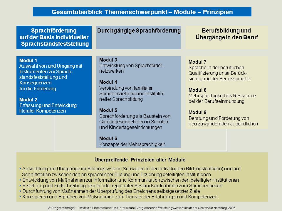 Modul 1 Auswahl von und Umgang mit Instrumenten zur Sprach- standsfeststellung und Konsequenzen für die Förderung Modul 2 Erfassung und Entwicklung li