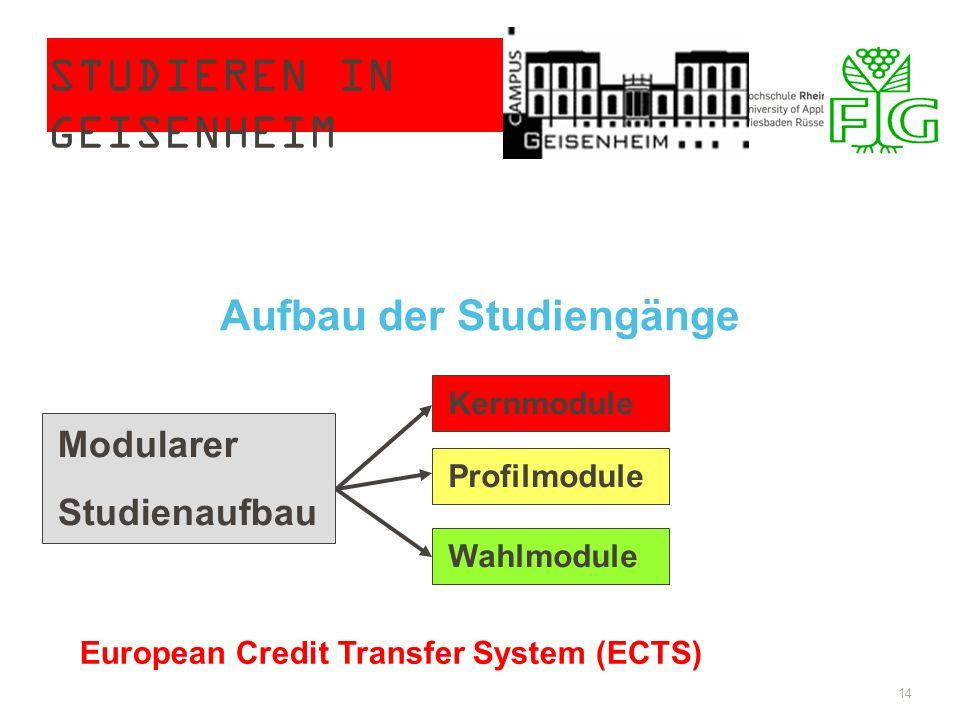 STUDIEREN IN GEISENHEIM 14 Modularer Studienaufbau Kernmodule Profilmodule Wahlmodule European Credit Transfer System (ECTS) Aufbau der Studiengänge