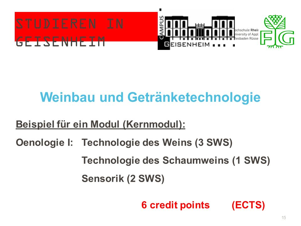 STUDIEREN IN GEISENHEIM 15 Weinbau und Getränketechnologie Beispiel für ein Modul (Kernmodul): Oenologie I: Technologie des Weins (3 SWS) Technologie des Schaumweins (1 SWS) Sensorik (2 SWS) 6 credit points(ECTS)