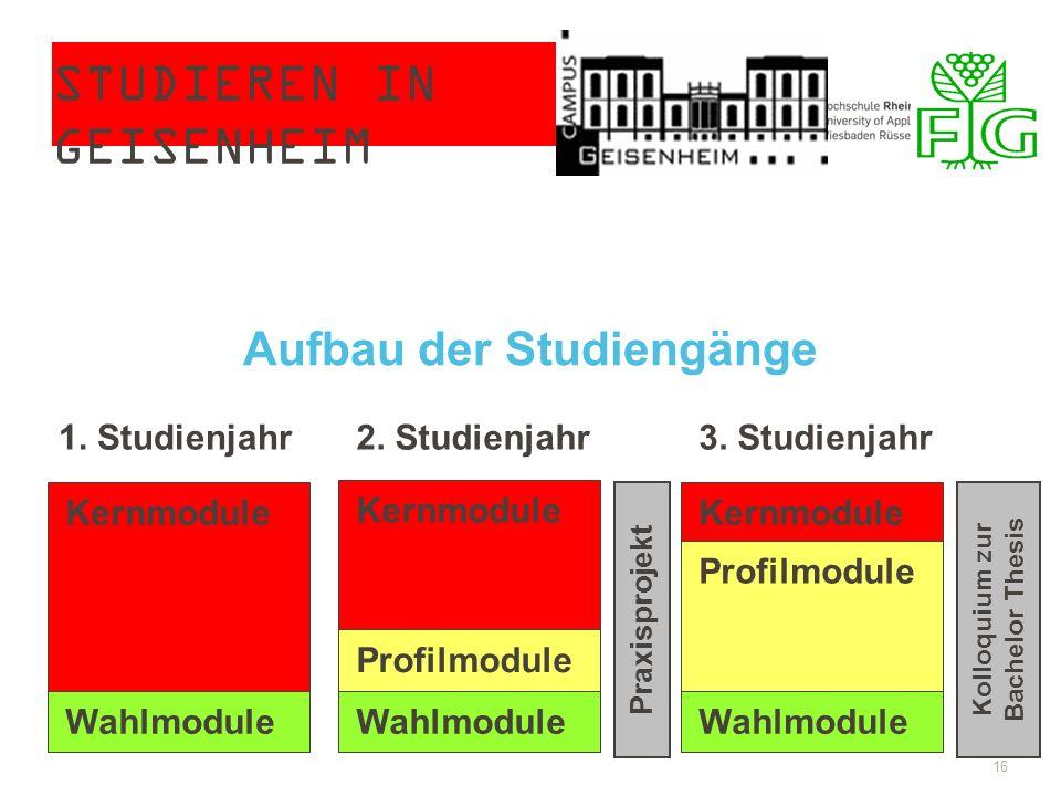 STUDIEREN IN GEISENHEIM 16 Kernmodule Wahlmodule 1. Studienjahr2. Studienjahr3. Studienjahr Kernmodule Profilmodule Wahlmodule Kernmodule Profilmodule