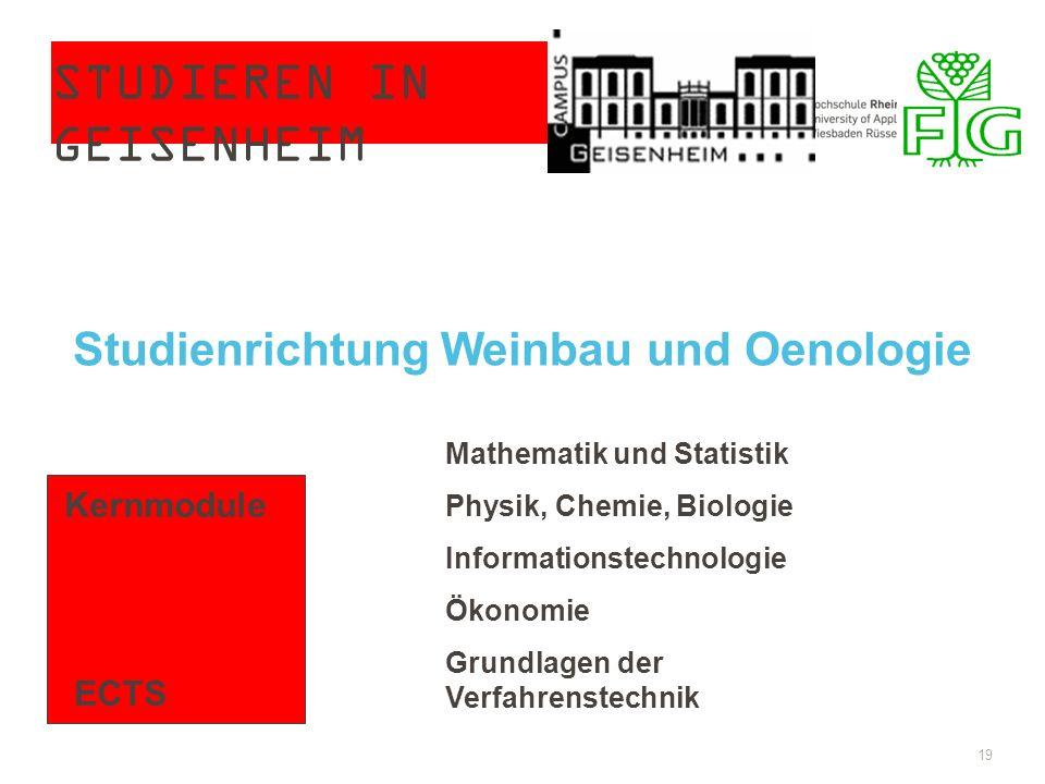 STUDIEREN IN GEISENHEIM 19 Studienrichtung Weinbau und Oenologie Kernmodule ECTS Mathematik und Statistik Physik, Chemie, Biologie Informationstechnol