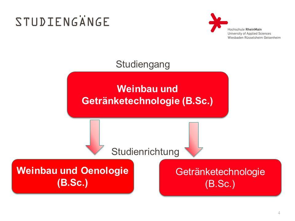 4 STUDIENGÄNGE Weinbau und Getränketechnologie (B.Sc.) Weinbau und Oenologie (B.Sc.) Getränketechnologie (B.Sc.) Studiengang Studienrichtung