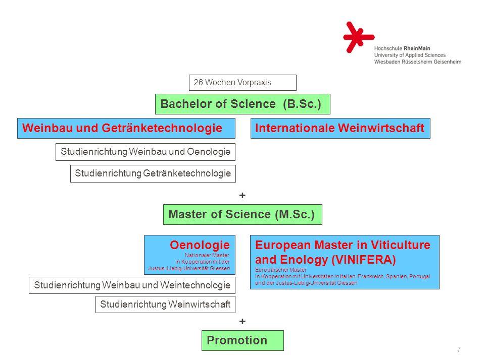 7 26 Wochen Vorpraxis Bachelor of Science (B.Sc.) Internationale WeinwirtschaftWeinbau und Getränketechnologie Studienrichtung Weinbau und Oenologie S