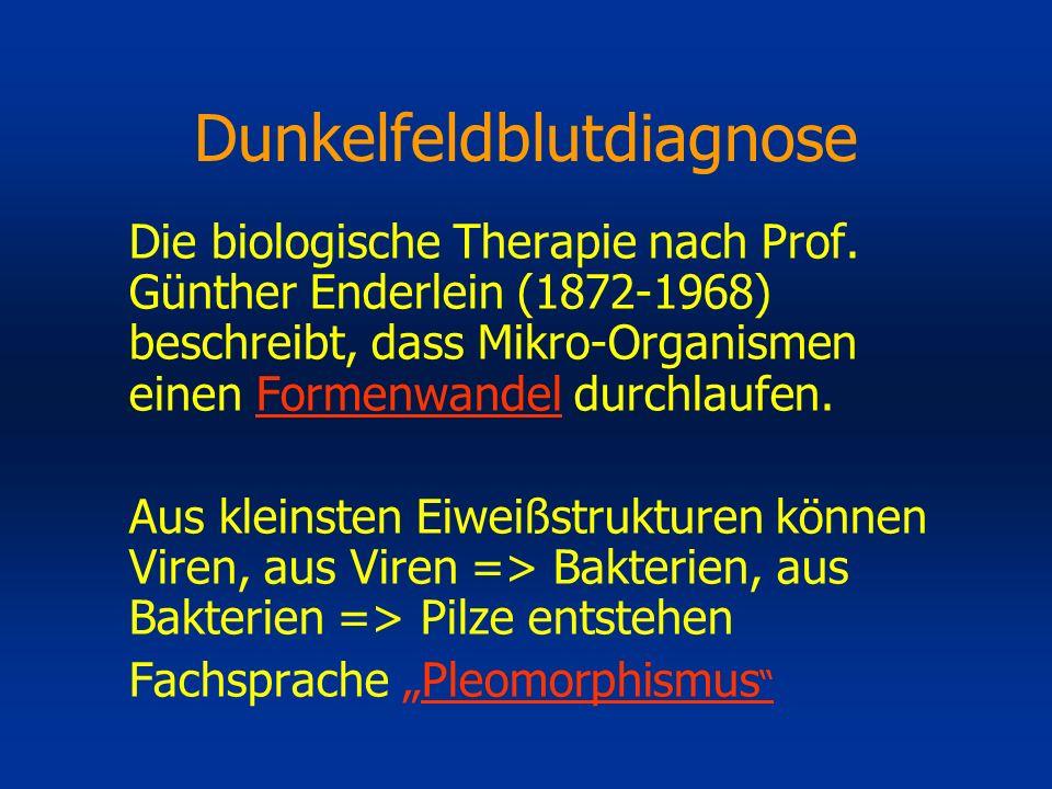 Dunkelfeldblutdiagnose Die biologische Therapie nach Prof. Günther Enderlein (1872-1968) beschreibt, dass Mikro-Organismen einen Formenwandel durchlau