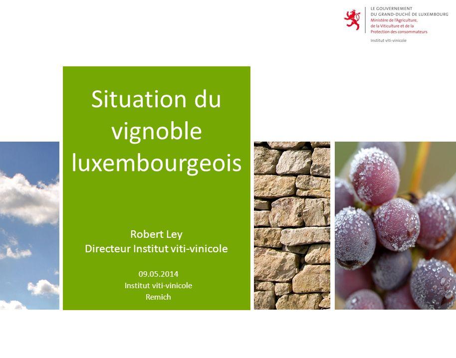 Übersicht 2 2 1.Situation der Winzerbetriebe 2.Situation des Weinbauareals 3.Weinkonsum in Luxemburg 4.Export
