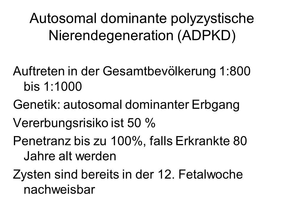 Autosomal dominante polyzystische Nierendegeneration (ADPKD) Auftreten in der Gesamtbevölkerung 1:800 bis 1:1000 Genetik: autosomal dominanter Erbgang
