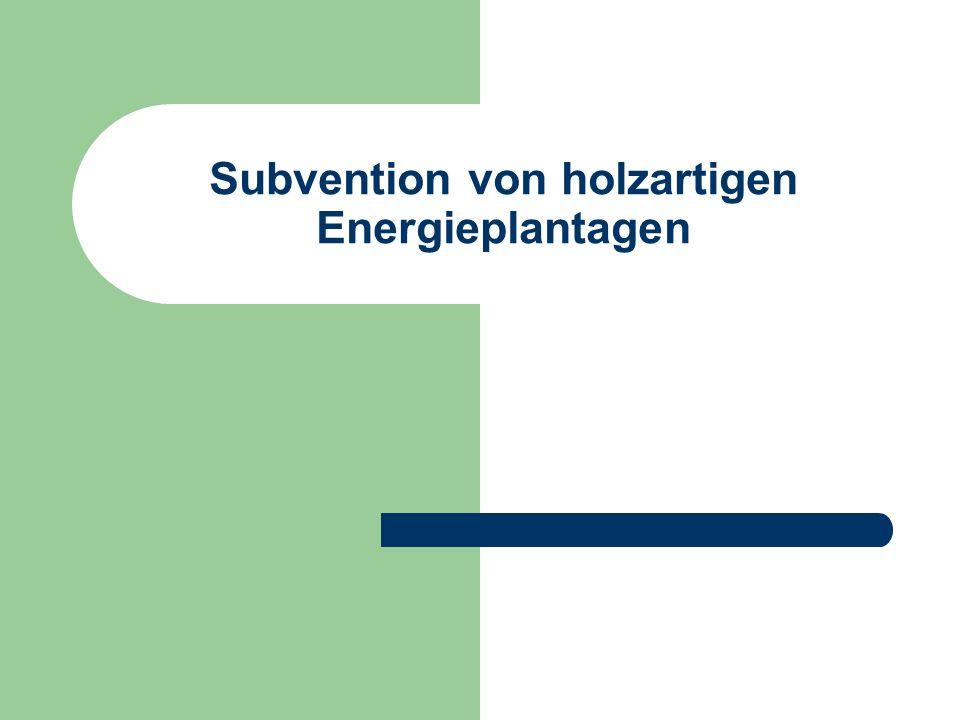 Subvention von holzartigen Energieplantagen